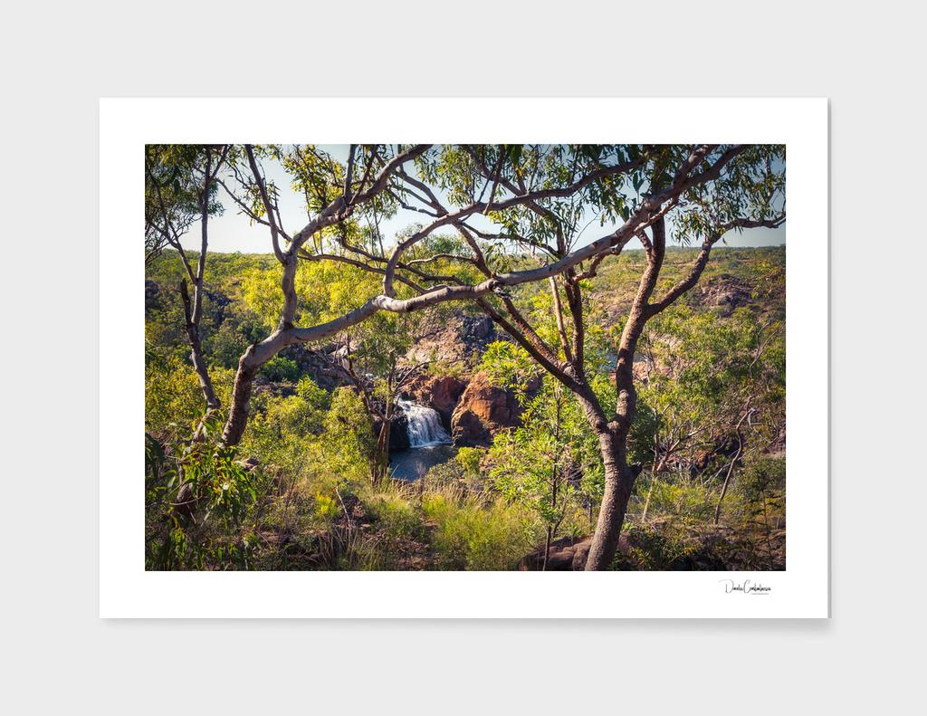 Edith Falls framed between trees, Katherine, Australia