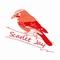 Scarlet Jay's avatar