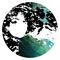 Pia Schneider's avatar