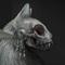 Petra Frank's avatar