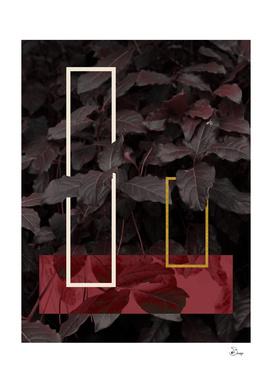 Burgundy Fall
