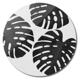 Monstera Leaf III BW