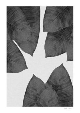 Banana Leaf III BW