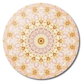 Spring Fantasy Floral Mandala