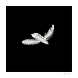 Three birdy feathers
