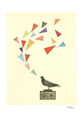 Pigeon Radio