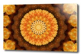 Gold Mum Fall Kaleidoscope