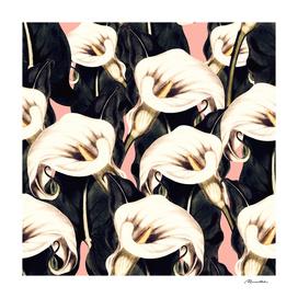 Calla Floral Botany