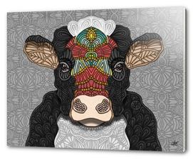 Bella the cow