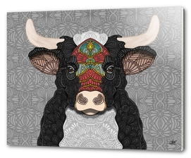 Billy the bull