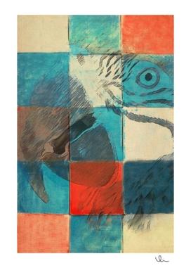 Jolis Parrots 3