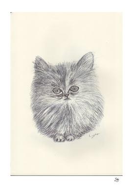BALLPEN CAT 4