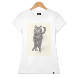 BALLPEN CAT 2