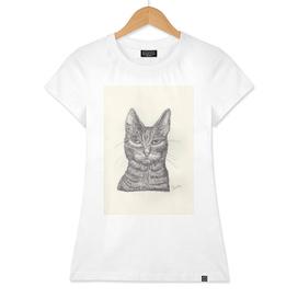 BALLPEN CAT 1