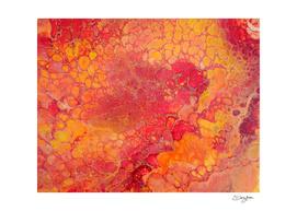 Orange Apeal