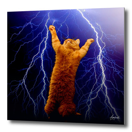 cat Thunders lighting space universe galaxy