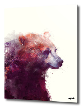 Bear Calm