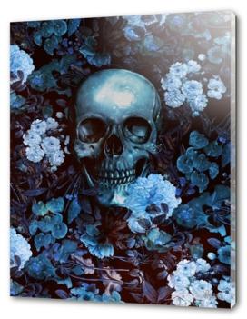 Skull III