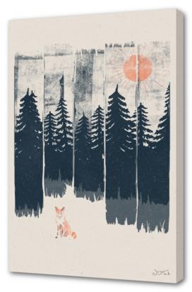 A Fox in the Wild...