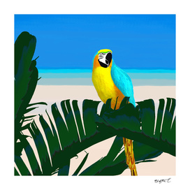 Parrot Tropical Banana Leaves Design