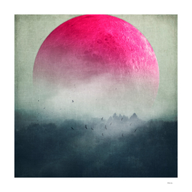 pink moon over misty woodlands