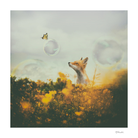 The fox and the butterfly