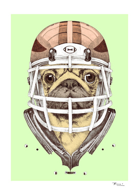 American Pug Football Yellow