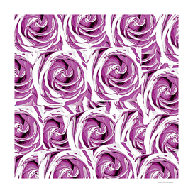 blossom pink rose texture pattern abstract background