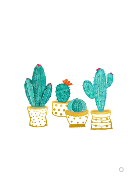 Cactus Garden V2