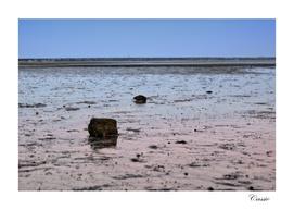 Low Tide in cape cod bay