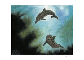 Dolphins underwater