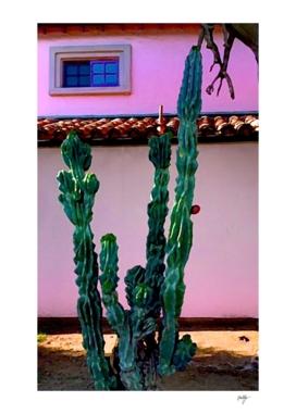 Beverly Hills Dobe