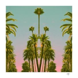 Beverly Palms