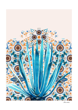 Cactus and Moroccan tiles