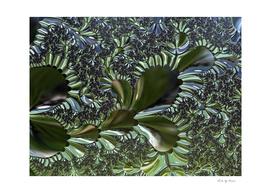 Sea Flora Fractal