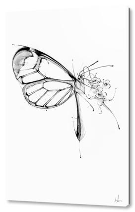 Butterfly Fuel