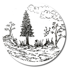Sketch 45 - Garden
