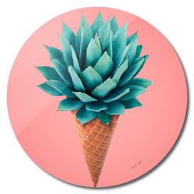Desert Dessert