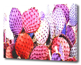 Purple Cactus Illustration