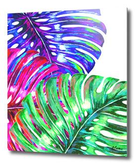 Colorful Monstera Illustration