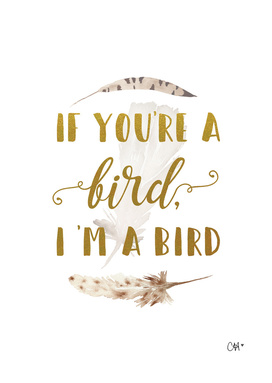 If You're a Bird