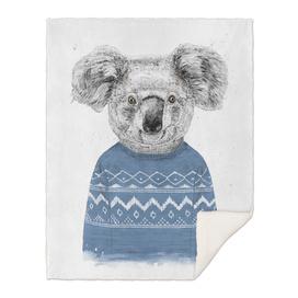 Winter koala