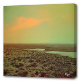 Lonely Landscape
