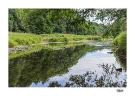 River bend summer