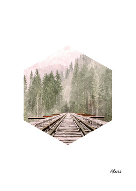 Geometric Railroad and Trees