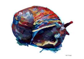 Cosmic Snail