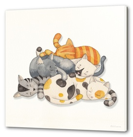 Cat Nap (Siesta Time)