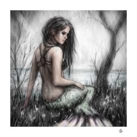Mermaid's Rest