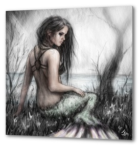 Mermaid's Rest