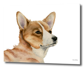 Welsh Corgi Dog Painting